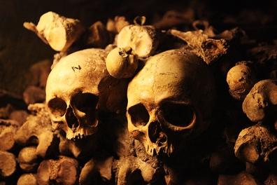 z - skull
