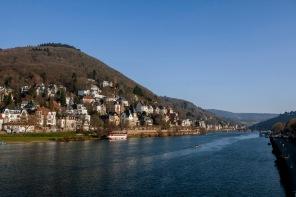 Blick auf den Heiligenberg (ganz oben mit Thingstätte) in Heidelberg