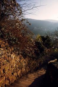 Schlangenweg mit Blick auf's Schloss